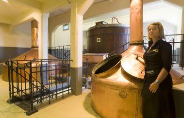 Brasserie du Bocq-Brasserie bis Provinz Namur