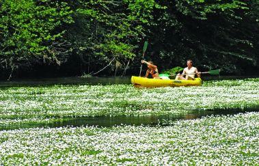 <p>Les passeurs réunis: descente en kayak</p>-Kayak bis Provinz Luxemburg