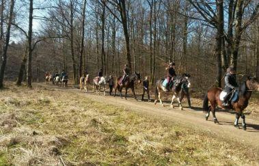 Ecurie des îles-Equitation bis Saint-Hubert