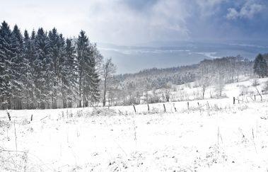 Skipisten von der Baraque Fraiture-Luges bis Provinz Luxemburg