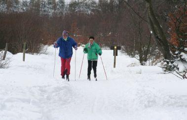 Langlaufloipe am Mont Rigi-Ski de fond bis Provinz Lüttich