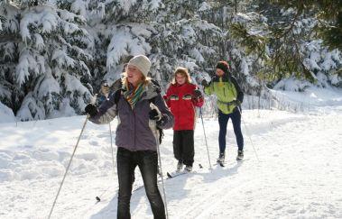 Skipisten von der Baraque Michel-Ski de fond bis Provinz Lüttich