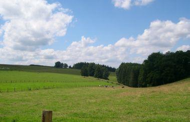 Gouvy-Ville bis Provinz Luxemburg